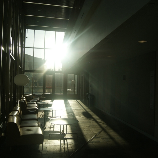 Silhouette Glare